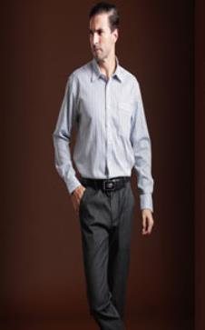 美国苹果Xinmeilong2012秋冬男装 衬衫