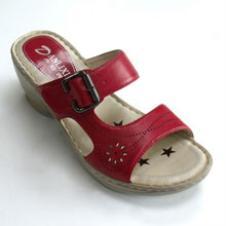 丹莉茜鞋业31389款