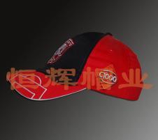 恒辉2013春夏帽子