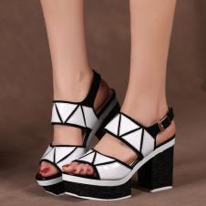 莎丝妮漫鞋业160446款