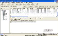 里诺软件IT信息化161887款