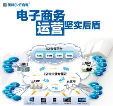 圣特尔软件IT信息化163101款