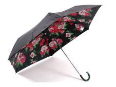 雨景时尚饰品166492款