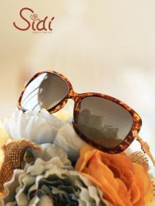 饰典豹纹框太阳镜