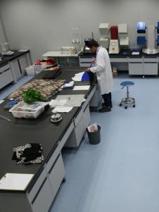 中紡標實驗室