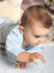 路易迪高婴幼童装新款