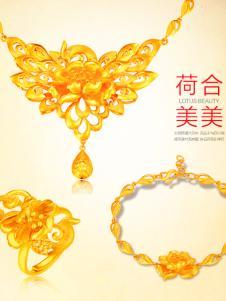 林大生黄金系列荷合美美