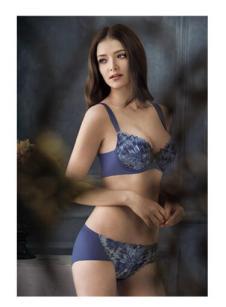 安莉芳紫金蓝内衣系列