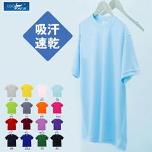 源头供货精梳棉文化衫圆领翻领短袖T恤