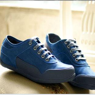 太子龙鞋业TAILILONG鞋业品牌男鞋招商加盟