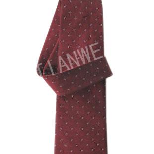 添维TIANWEI2013年 领带品牌新品发布