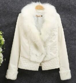 杭州冬季女服装上海七浦路时尚女冬装批发