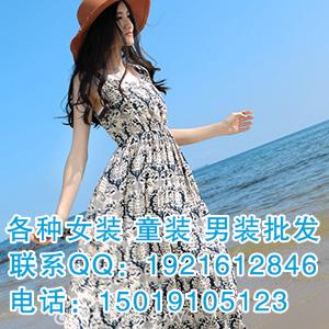 优雅百搭系列韩版雪纺衫连衣裙批发