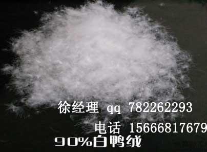 渤商所烟台营业部合格的鸭绒供应