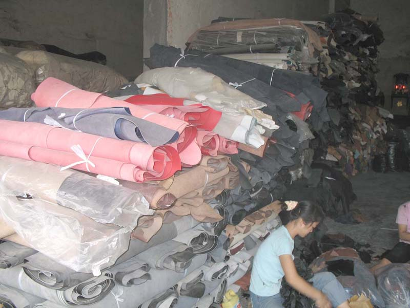 广东最大的处理皮回收