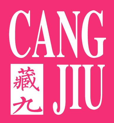 杭州十大品牌女装加盟-藏九