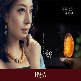 HWSA|爱華尚与您相约2015北京国际珠宝展