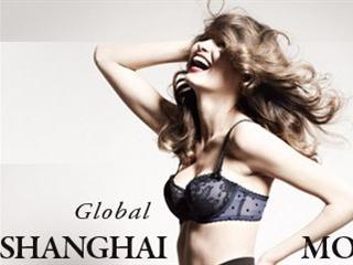 2012上海国际时尚内衣展新闻发布会
