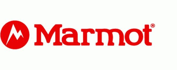 logo logo 标志 设计 矢量 矢量图 素材 图标 600_240